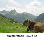 Summer in the mountains - stock photo