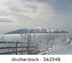 Winter over all - stock photo