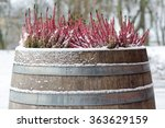 pink heather in a wooden barrel ...