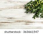 easter boxwood as easter symbol ...   Shutterstock . vector #363661547