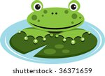 a vector illustration of a frog ... | Shutterstock .eps vector #36371659