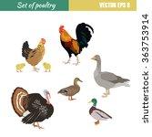 vector set of different flat... | Shutterstock .eps vector #363753914