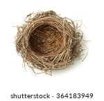 Top View Of Empty Bird Nest...