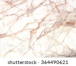 white marble texture background ... | Shutterstock . vector #364490621