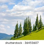 Mountain landscape with trees on flank of hill - stock photo