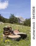 alpine boots in a meadow with... | Shutterstock . vector #3645808