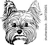 yorkshire terrier dog hand... | Shutterstock .eps vector #364720601