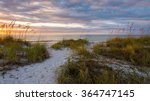 sand dunes at dusk clearwater... | Shutterstock . vector #364747145
