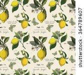 vector pattern with lemon... | Shutterstock .eps vector #364789607