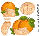 Mandarin Isolated Vector On...