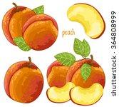 peach isolated vector on white... | Shutterstock .eps vector #364808999