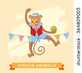 Circus Monkey  Circus Animals ...