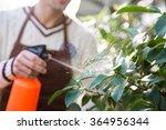 Closeup Of Man Gardener In...