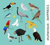 collection of various birds... | Shutterstock .eps vector #364998311