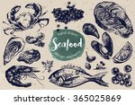 hand drawn sketch set of... | Shutterstock .eps vector #365025869