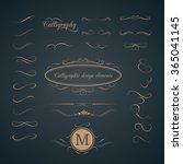vintage set of calligraphic... | Shutterstock . vector #365041145