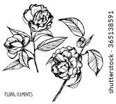 camellia ink pen capillary... | Shutterstock .eps vector #365138591
