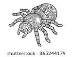 Cute Ornate Zentangle Spider....