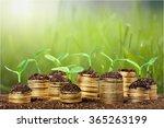 investment.   Shutterstock . vector #365263199