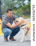 man training a guide dog | Shutterstock . vector #365436755
