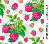 vector illustration. classic... | Shutterstock .eps vector #365510315