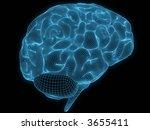 wire brain | Shutterstock . vector #3655411