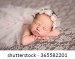 adorable beautiful newborn baby ... | Shutterstock . vector #365582201