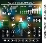 Постер, плакат: Water and human body