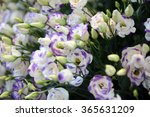 Blue White Purple Bunch Of...