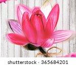 high resolution watercolor... | Shutterstock . vector #365684201