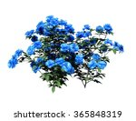 plant isolated collection | Shutterstock . vector #365848319