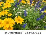 Lush Blooming Flower Bed With...