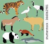 vector set of cartoon animals... | Shutterstock .eps vector #366062981