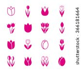 tulip icons  vector illustration | Shutterstock .eps vector #366181664