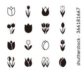 tulip icons  vector illustration | Shutterstock .eps vector #366181667