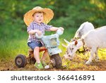 portrait of a boy in the summer ... | Shutterstock . vector #366416891