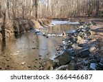 A Creek In The Forest With Sno...