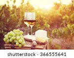various sorts of cheese and two ... | Shutterstock . vector #366555641