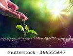 care of new life   watering... | Shutterstock . vector #366555647