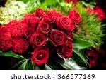 Beautiful Roses Background...