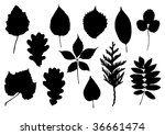 set of vector silhouettes of... | Shutterstock .eps vector #36661474