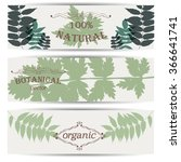 banners with natural leaves  | Shutterstock .eps vector #366641741