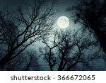 Dark Enchanted Photo Of A Full...