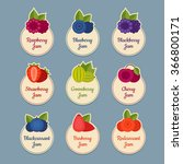 berry icon set. labels with... | Shutterstock .eps vector #366800171