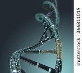 artificial dna molecule  the... | Shutterstock . vector #366811019