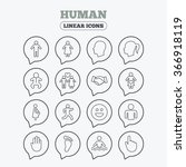 human icons. male and female... | Shutterstock . vector #366918119