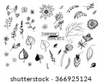 hand drawn doodle flowers ... | Shutterstock .eps vector #366925124