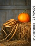 Pumpkin With Rope On A Bale Of...