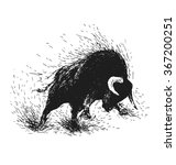 hand drawing of a raging bull | Shutterstock .eps vector #367200251