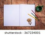 blank opened brochure or book... | Shutterstock . vector #367234001